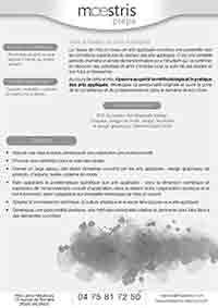 Plaquette Maestris Pro Valence