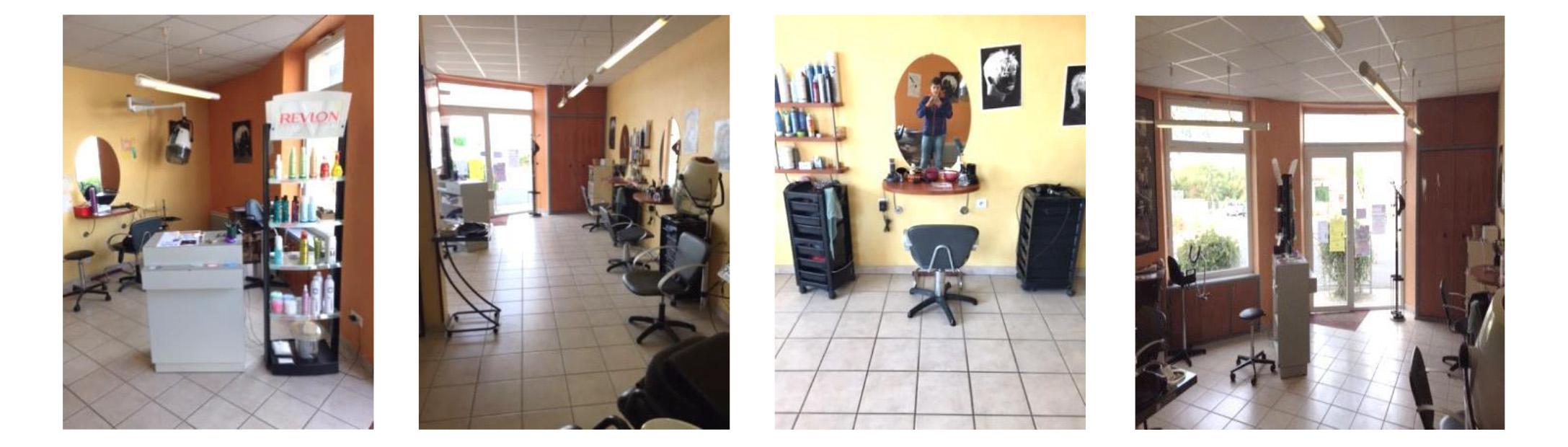 Salon de coiffure vendre maestris formation valence for Salon de l habitat valence